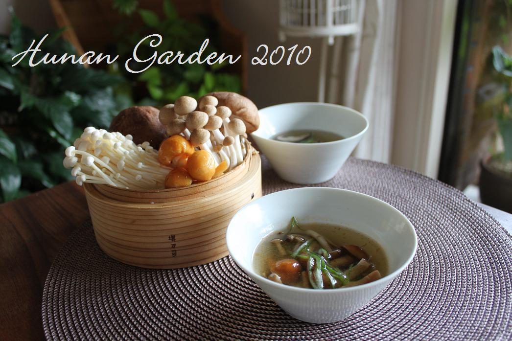 秋のきのことワンタンのスープ